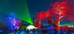 csm_Pfalz_Bad_Duerkheim_Deutsche_Weinstrasse_Veranstaltungen_Weinfeste_Weinbergnacht_Roemerkelter_Laser_und_leuchtende_Baeume_9a61934e86